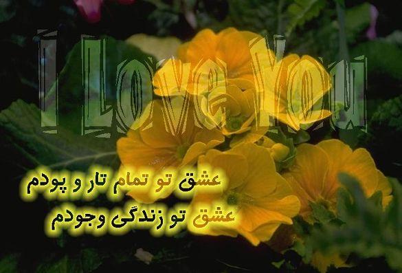 تصاویر زیباسازی وبلاگ ، عروسك یاهو ، متحرك             www.bahar-20.com