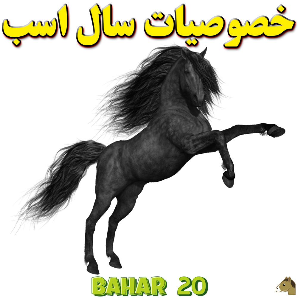 خصوصیات سال اسب